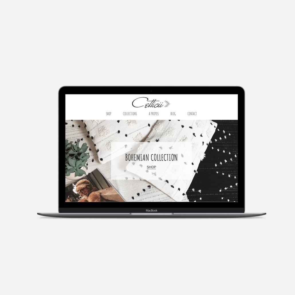 Accueil site internet Cetticii